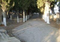 Le cimetière de Constantine